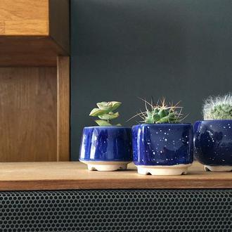 Керамический горшок для кактусов, суккулентов, размер М, Клеопатра