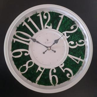 Часы со мхом