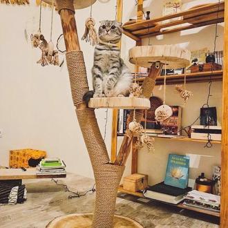 ЭКО Когтеточка, Когтеточки для кошек. Домик, лежак, комплекс для кошки. Игровой комплекс.