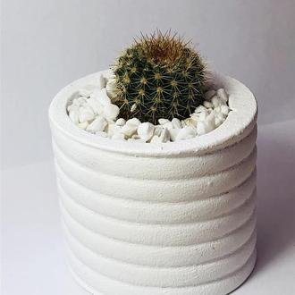 Кашпо с суккулентом, кашпо с кактусом, бетонное кашпо, кашпо «пружинка»