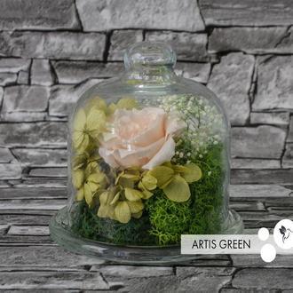 Мини-колба со стабилизированными растениями и розой «Little tenderness»