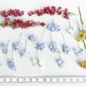 Сухоцветы для украшений из смолы Гербарий Маленькие цветы (Цветочный сет №4) Dry Flowers