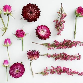 Сухоцветы для украшений из смолы Гербарий Маленькие цветы (Цветочный сет №3) Dry Flowers