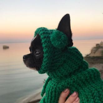 одяг для собак дрібних порід