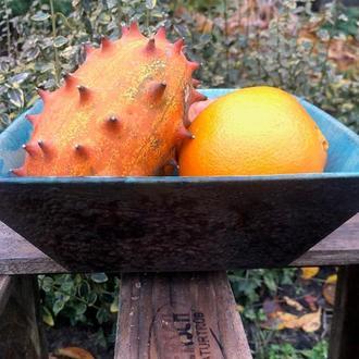 Квадратная чаша для салата или фруктов, обжиг Раку
