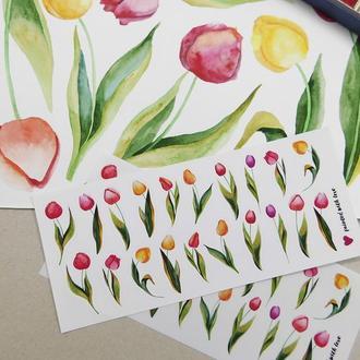 Наклейки стикеры тюльпаны