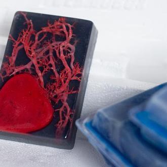 """Сувенирное мыло """"Сердце и сосуды"""" с красным норвежским мхом и углём подарок ко Дню Святого Валентина"""
