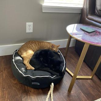 Лежак - подушка для собак и кошек Pets Lounge Pet Pillow Black, 60 см