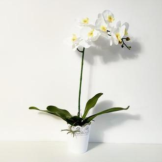 Орхидея фаленопсис из латекса большая белая