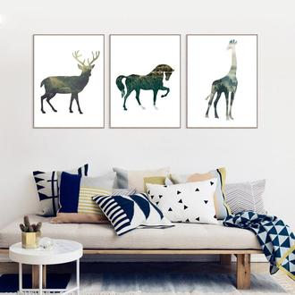 Фото постер. Коллекция Animals