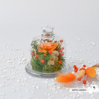 Мини-колба со стабилизированными растениями и оранжевой розой