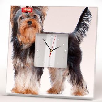 "Часы на стену ""Йоркширский терьер"""
