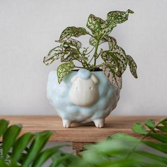 Керамический горшок для растений Овечка голубая, размер M