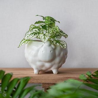 Керамический горшок для растений Овечка белая, размер M