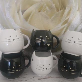 Очаровательные чашки кошечки
