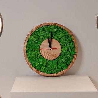 Часы с стабилизированным мхом