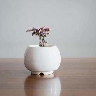 Керамический вазон для цветов  6,2х6,3см Круглый Белый