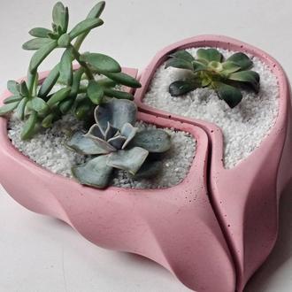 Сердце половинки розовое с суккулентами
