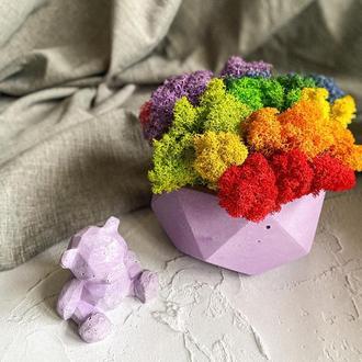 Бетонный горшок со мхом разных цветов