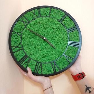Часы из стабилизированого мха