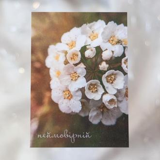 Нежная открытка с белыми цветами подруге, Яркая цветочная открытка для любимой, Неймовірній