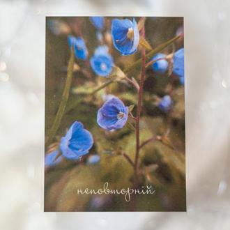 Открытка с цветами незабудками для любимой, Поздравительная открытка на день рождения жене