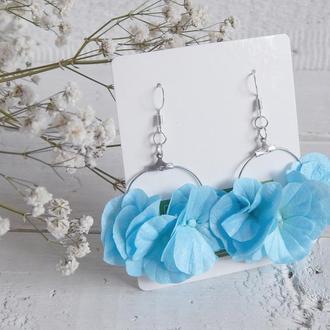 Блакитні сережки з квітами гортензії