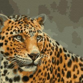 Картина за номерами 40х50 Леопард (GX33731)