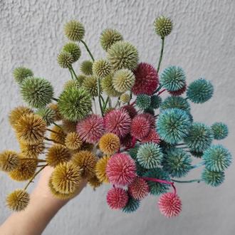 Мордовник сухоцветы крашенные