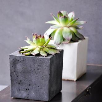 Кашпо из бетона куб 8см ( для сукулента, скандинавскиймох)