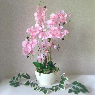Интерьерная Орхидея в кашпо