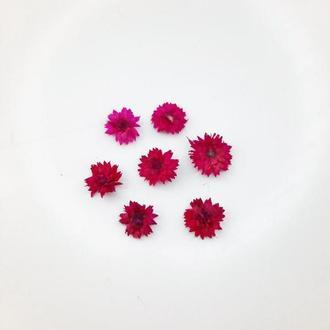 Маленькие малиновые цветы для смолы, размеры до 1 см.