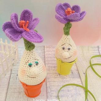 Квіти,перші квіти,пролісок,крокус