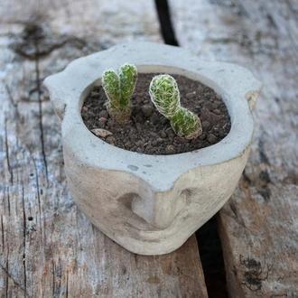 Оригинальный необычный горшочек для вашего цветка, кактуса, суккулентов.