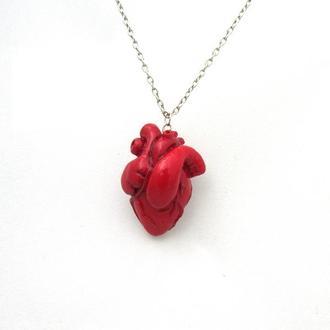 """Анатомическое сердце из полимерной глины """"Heart"""" 2"""