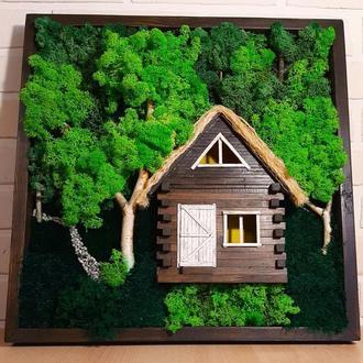 """Картина 3D з дерева та стабілізованого моху """"Хатинка в лісі"""""""