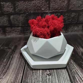 Горшок для цветов с подставкой,бетонное кашпо, кашпо под суккулент (Код ДИМЕТРА)