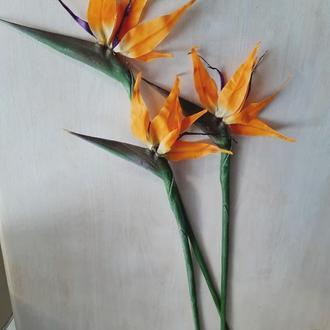 Стрелиция. Райская птица. Искусственный цветок.