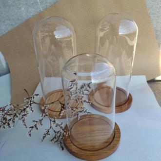 Клош стеклянный с деревянной подставкой