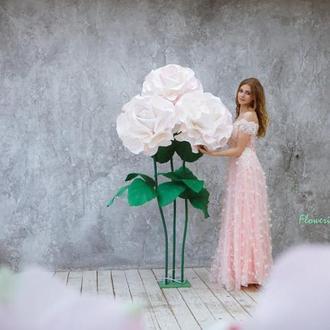 Гигантские белые розы со светодиодной подсветкой