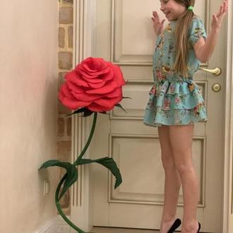 Красная большая красивая роза!