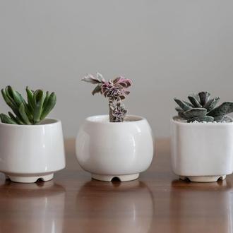 Набір керамічних горщиків Mini Plant маленького розміру 6,2-6,5 см Білий 3 шт