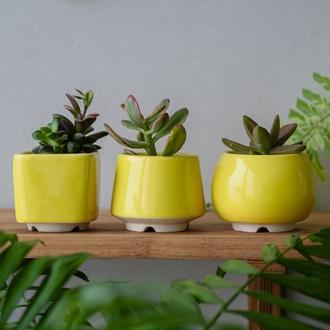 Набор керамических горшков Mini Plant маленького размера 6,2-6,5 см Яркий Желтый 3 шт