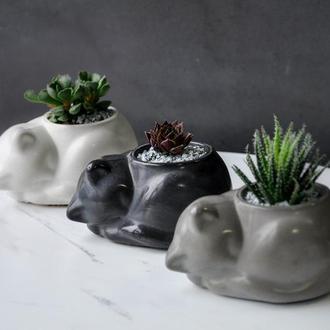 Котик из бетона кашпо для сукулента (или стабилизированный мох)