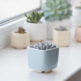Керамический горшок для кактусов 6,4х6,5см Квадратный Голубой