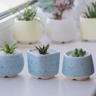 Керамический горшок для кактусов и суккулентов  Голубой В Крапинку размер М