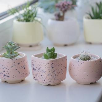 Керамический горшок для кактусов и суккулентов  Розовый В Крапинку размер М