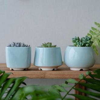 Набор керамических горшков Mini Plant маленького размера 6,2-6,5 см Голубой 3 шт