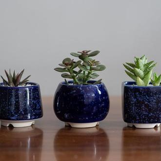 Набор керамических горшков Mini Plant маленького размера 6,2-6,5 см Клеопатра 3 шт