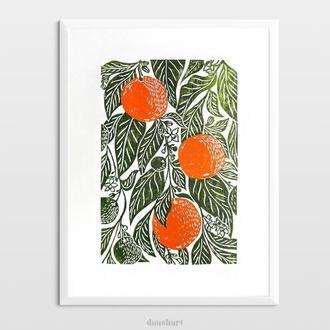 Інтер'єрна картина(гравюра) «Апельсини» в стилі ботаніка